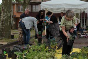 Plantons sur le seuil des maisons avec les conseils de l'association Les Jardins d'Aujourd'hui